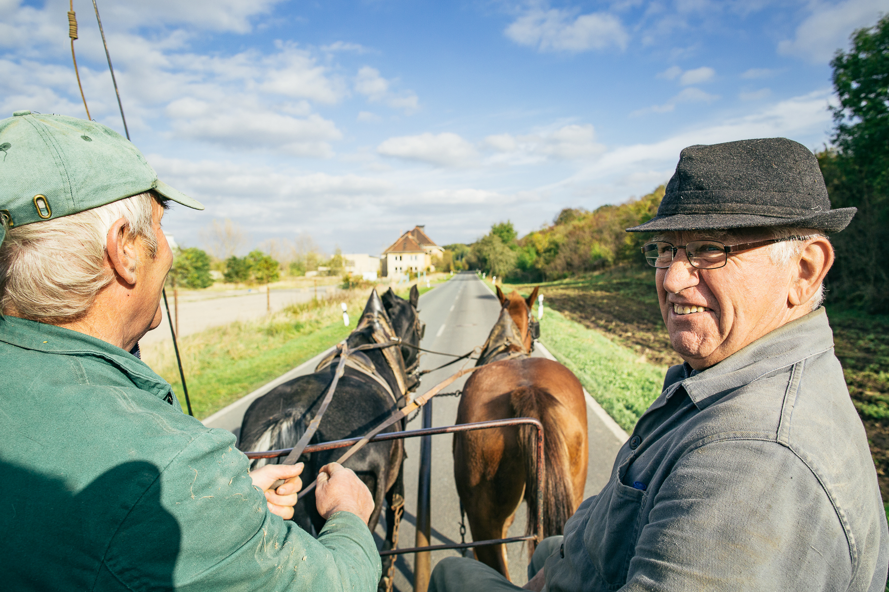 Elderly Men Riding a Horse Drawn Carriage