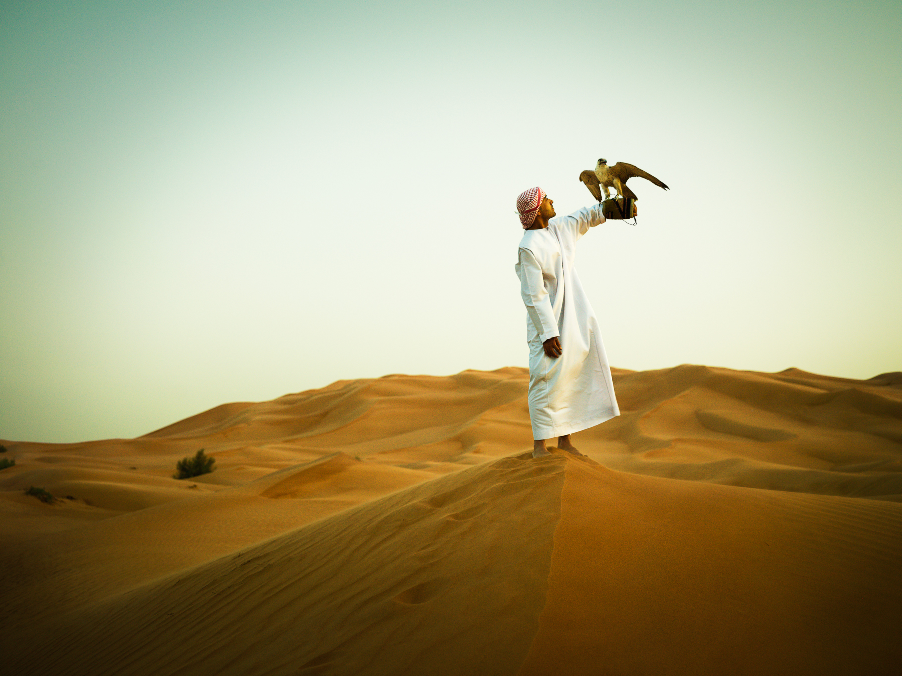 Man and His Falcon in the Desert