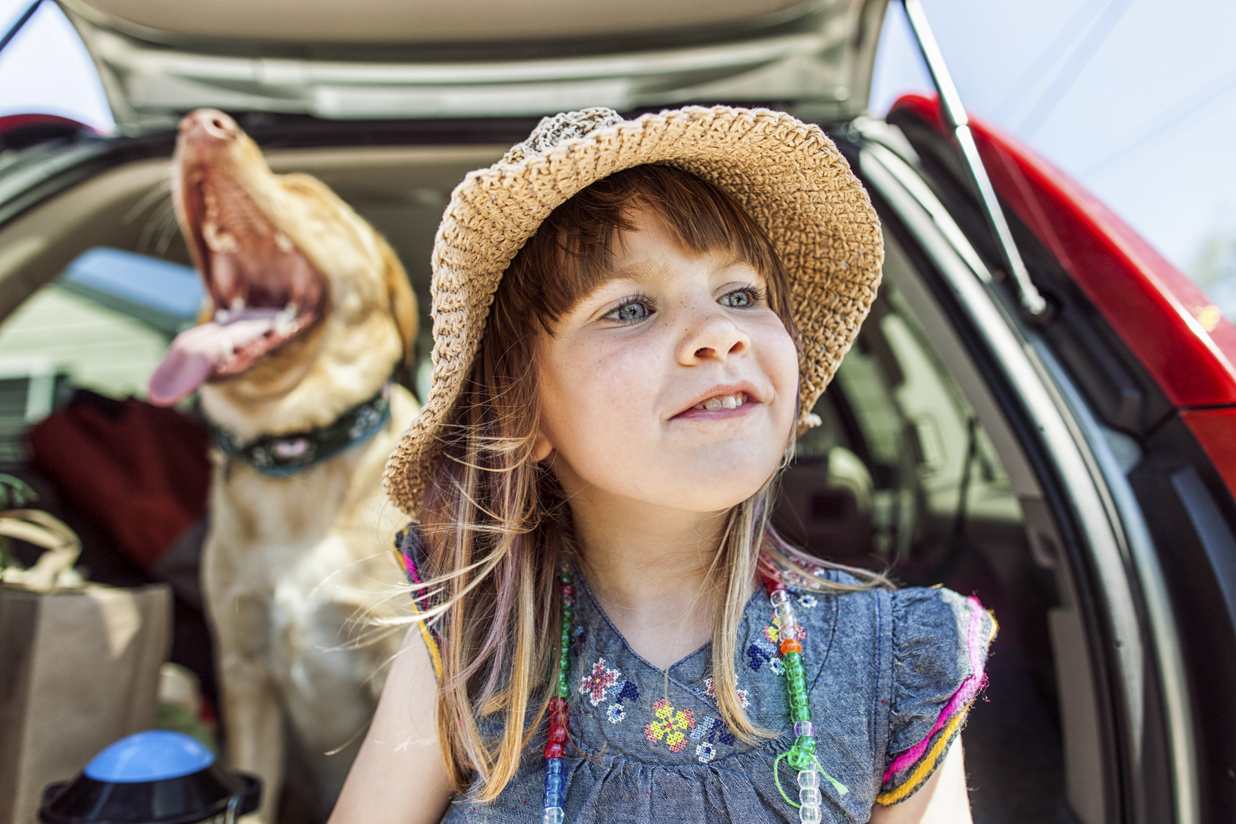 Girl and her Dog in the Back of a Car