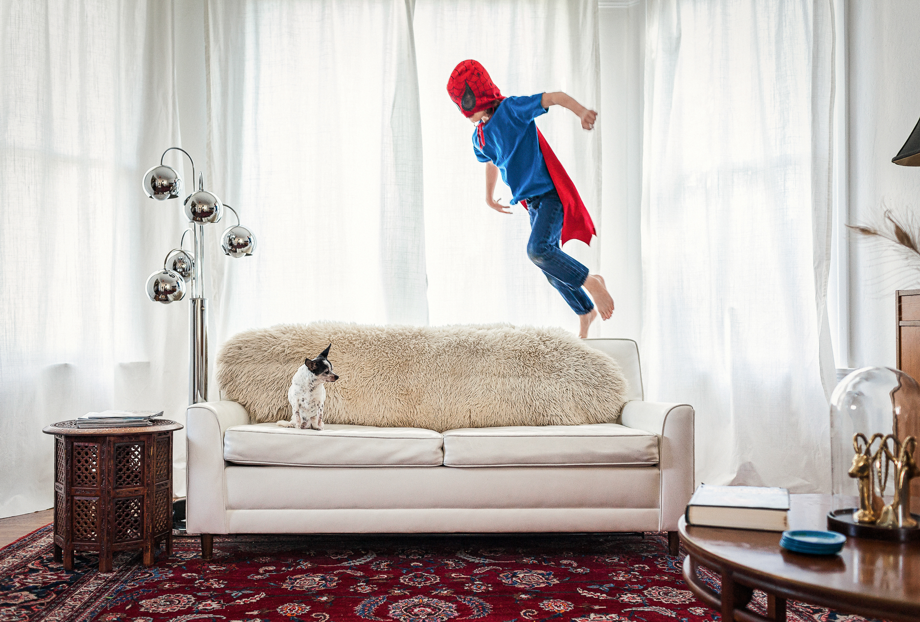 Boy Jumping onto a Couch with a Dog